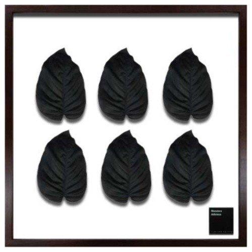 F-style Frame リーフアートフレーム Hosta.cv / Black ギボウシ ホスタ 美工社 62.5×62.5×3cm 造花 額付きインテリア通販 取寄品 シネマコレクション