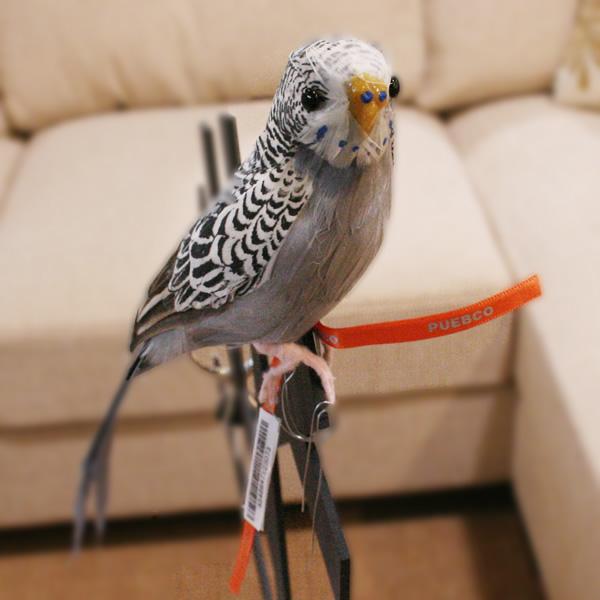 セキセイインコのオブジェ 即納 プエブコ PUEBCO ARTIFICIAL BIRDS バードオブジェBudgieセキセイインコ グレイ 123073 メーカー再生品