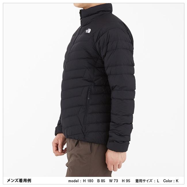 8ad4b26ef THE NORTH FACE North Face THUNDER JACKET sander jacket (men's) NY81812