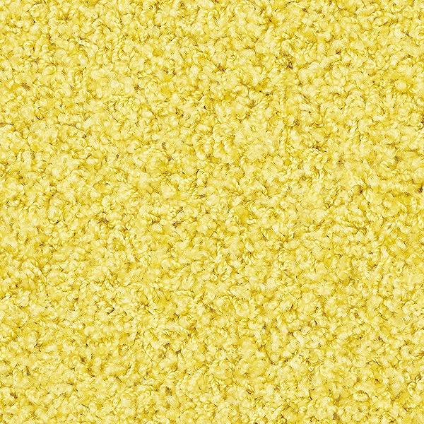 【メーカー直送】 ラグ カーペット マット ジャスパーPlus 200x300 レモン Prevell 227623017