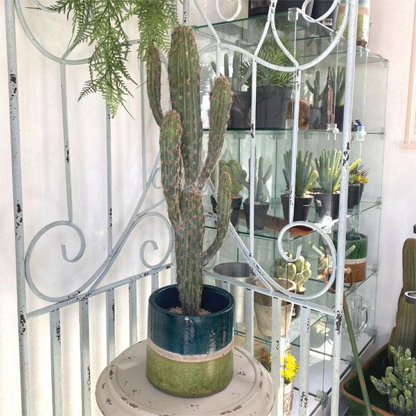 送料無料 柱サボテン カクタス 観葉植物 造花 ユーフォルビアポット ギフト お祝い 現品 開店 開業 おしゃれ かわいい フェイクグリーン 直送商品 fake おすすめ bb870 観葉植物の造花 鉢 fm cuctus 人工観葉植物