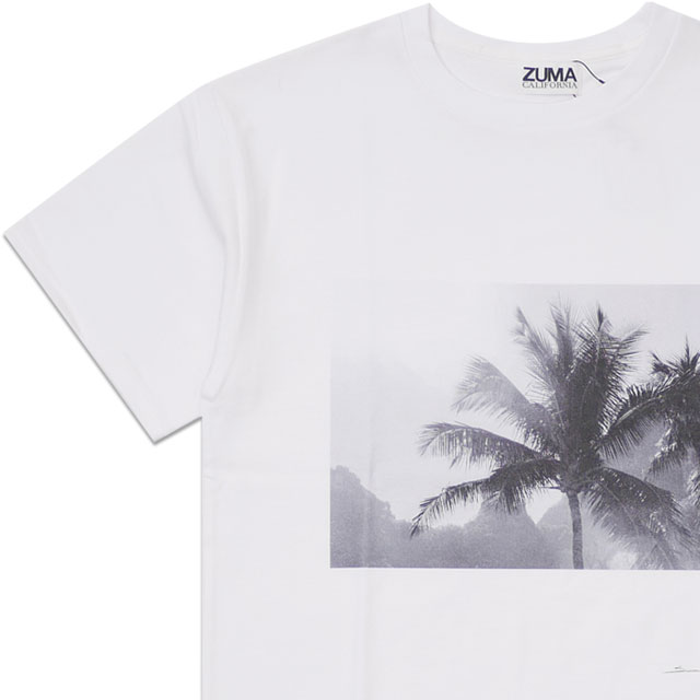 新品 ロンハーマン RHC Ron Herman x スティーブン・リップマン Steven Lippman palm Tee Tシャツ WHITE ホワイト 白 メンズ 新作