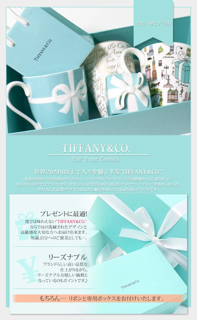 TIFFANY&CO. (티파니) 보우 상자 BLUE 274-000339-014