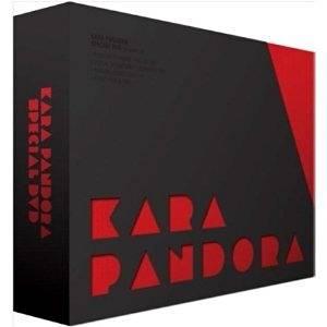 KARA PANDORA SPECIAL DVD 新品