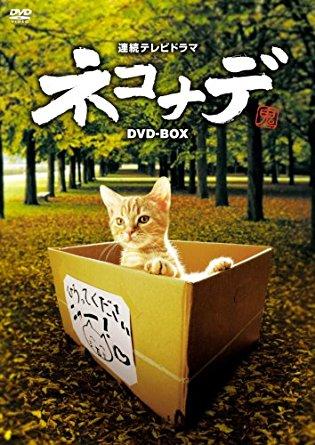 連続テレビドラマ ネコナデ DVD-BOX(4枚組) 小木茂光 新品 マルチレンズクリーナー付き