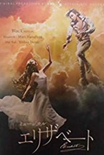 ミュージカル 公式 エリザベート 初回限定 DVD Black ver マルチレンズクリーナー付き 井上芳雄 新品 花總まり