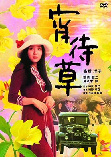 宵待草 [DVD] 高橋洋子 新品 マルチレンズクリーナー付き