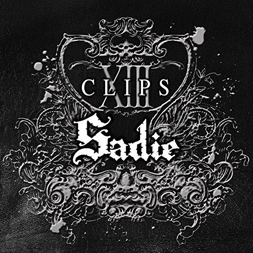 CLIPS-13 [DVD] Sadie マルチレンズクリーナー付き 新品