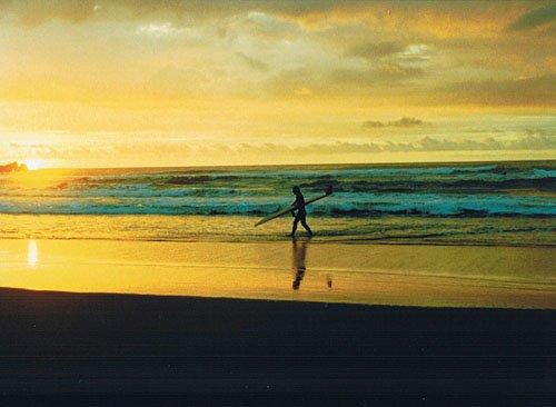 moa モア~サーフィン·ジャーニー·イン·ニュージーランド~ [DVD] 抱井保徳 マルチレンズクリーナー付き 新品