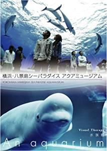 NHKDVD 水族館~An Aquarium~ 横浜・八景島シーパラダイス アクアミュージアム マルチレンズクリーナー付き 新品