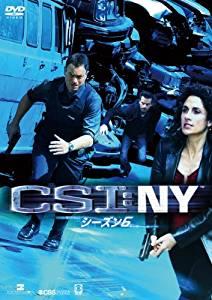 CSI:NY シーズン6 [DVD] コンプリートBOX-1 [DVD] CSI:NY ゲーリー・シニーズ 新品 マルチレンズクリーナー付き 新品, オーダーカーテンの店メルサ:9f7b04d8 --- nem-okna62.ru