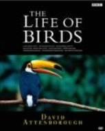 BBC ライフ・オブ・バーズ/鳥の世界 DVD-BOX 新品 マルチレンズクリーナー付き