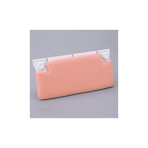 『カード対応OK!』TOTO 浴室 オプション 部材【EWBP106】背当てボード
