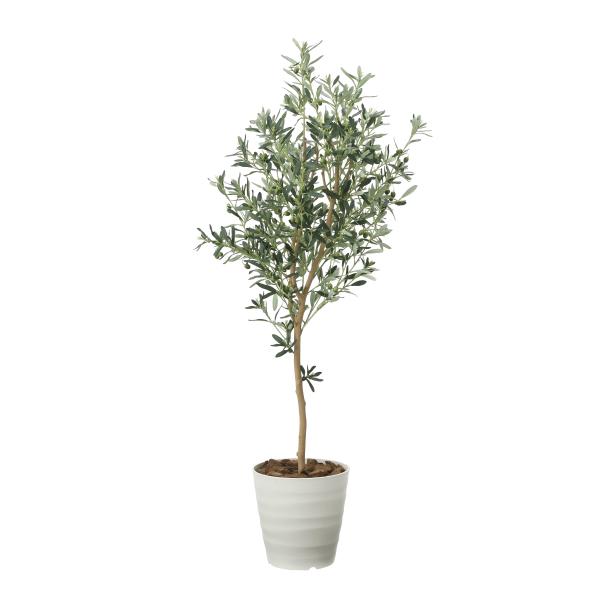 《アートグリーン》《人工観葉植物》光触媒 光の楽園 オリ-ブツリ-1.6