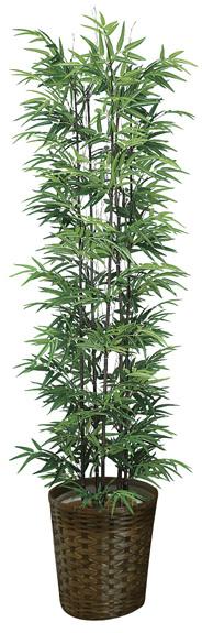 【送料無料】《竹・バンブー》《アートグリーン》《人工観葉植物》光触媒 光の楽園 黒竹1.8(幹:天然黒竹)