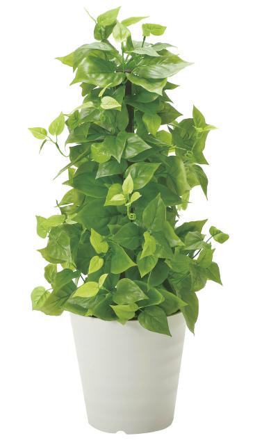 《アートグリーン》《人工観葉植物》光触媒 光の楽園 ポールライムポトス