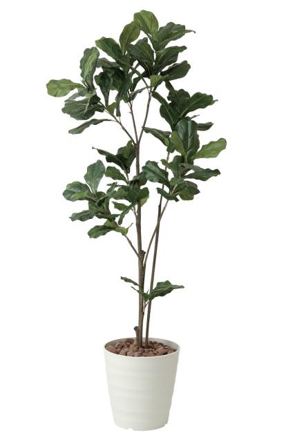 《アートグリーン》《人工観葉植物》光触媒 光の楽園 カシワバゴム1.8