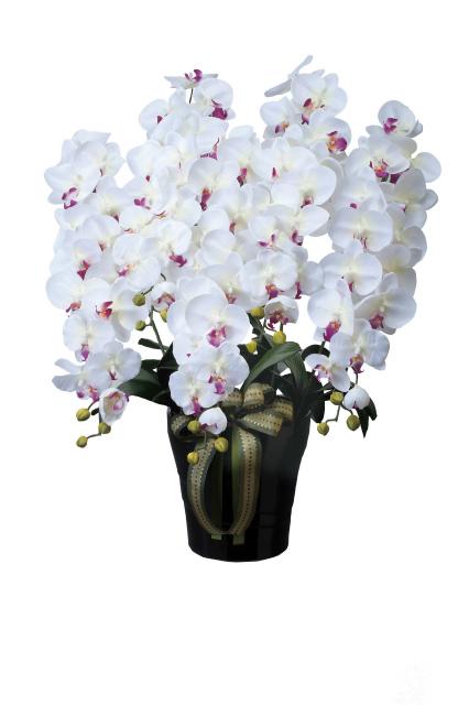 【送料無料】《アートフラワー》《人工観葉植物》光触媒 光の楽園 ロイヤル胡蝶蘭5本立W/AB