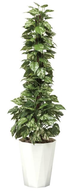 【送料無料】《アートグリーン》《人工観葉植物》光触媒 光の楽園 ポトス1.5
