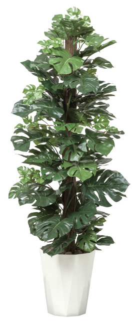【送料無料】《アートグリーン》《人工観葉植物》光触媒 光の楽園 スプリット1.35