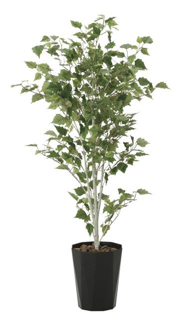 《アートグリーン》《人工観葉植物》光触媒 光の楽園 白樺 1.4