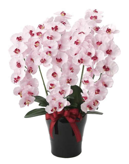 《アートフラワー》《人工観葉植物》光触媒 光の楽園 プレミアム胡蝶蘭5本立P