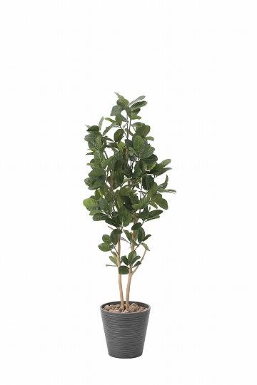 【送料無料】《アートグリーン》《人工観葉植物》光触媒 光の楽園 パンの木1.6