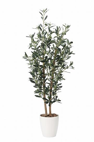 《アートグリーン》《人工観葉植物》光触媒 光の楽園 オリ―ブ1.2