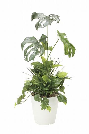 【送料無料】《アートグリーン》《人工観葉植物》光触媒 光の楽園 モンステラ90植栽付