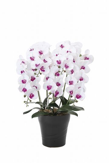 【送料無料】《アートフラワー》《人工観葉植物》光触媒 光の楽園 フレッシュ胡蝶蘭W/L  5本立