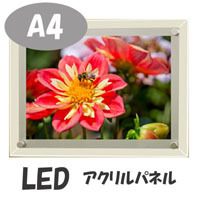 A4型 LEDパネル