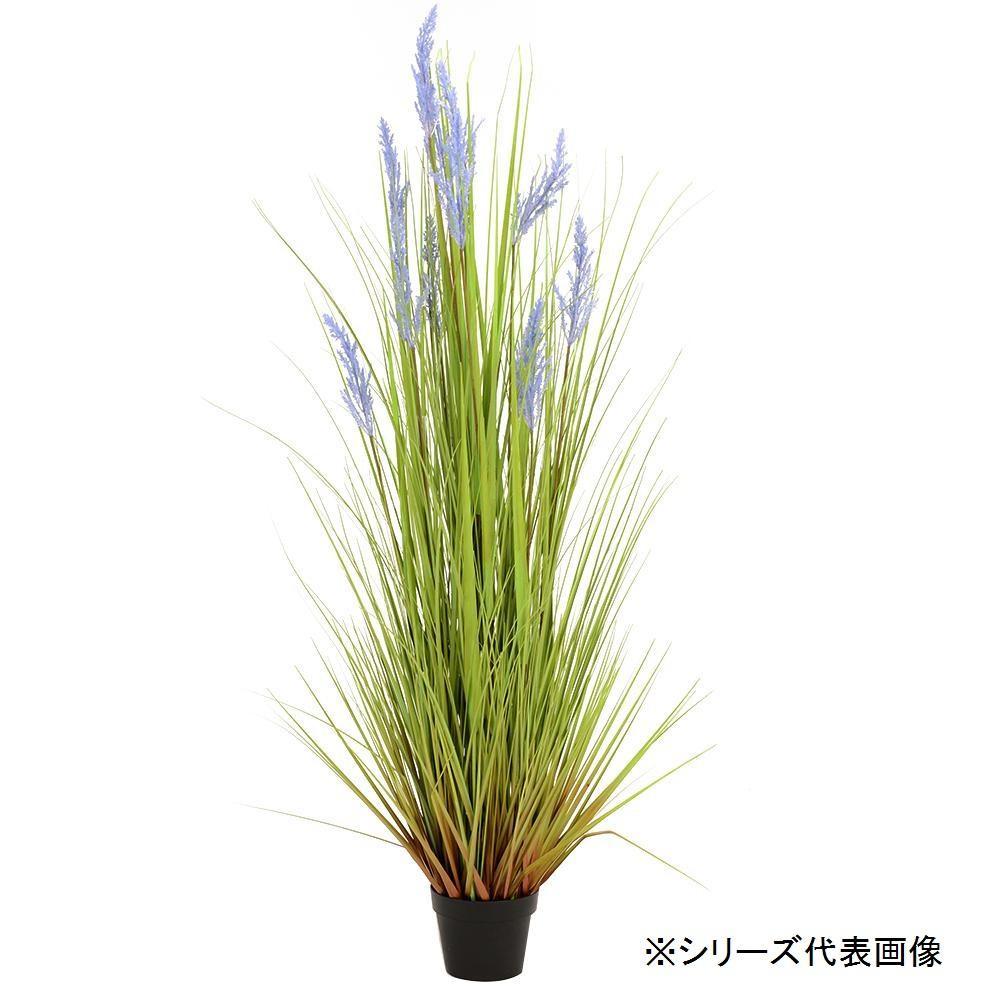 人工観葉植物 グレイングラスパープル M 約122cm 159015710「他の商品と同梱不可/北海道、沖縄、離島別途送料」