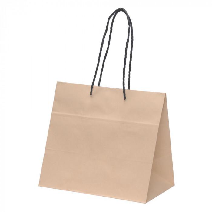 【代引不可】パックタケヤマ フラワーバッグ 手提袋 BS 10枚×10束 XZT00926「他の商品と同梱不可/北海道、沖縄、離島別途送料」