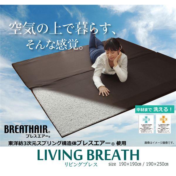 ◇ブレスエアー 東洋紡 BREATHAIR 洗える マット ラグマット カーペット 3畳 『リビングブレス』 約190×250cm※他の商品と同梱不可
