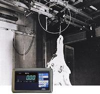 【送料無料】大和製衡/YAMATO モノレールスケール(枝肉用計重機)300kg
