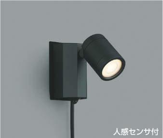 コイズミ KOIZUMI 照明 住宅用 エクステリアライト【AU43207L】