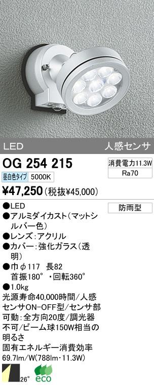 オーデリック エクステリアライト スポットライト 【OG 254 215】 OG254215