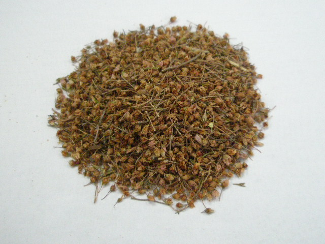梅のような甘酸っぱい香りとクセのない味のハーブティー ヒース ホール 信頼 WH 即出荷 20g カリス成城 ドライハーブ