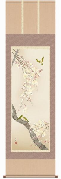● 西尾香悦『桜花(尺五立)』版画+手彩色【R2467】・掛軸 掛け軸・花鳥 新品 表装済 花鳥 植物 桜 さくら サクラ 季節春 春掛け ギフト・プレゼント(贈答)にはラッピングします