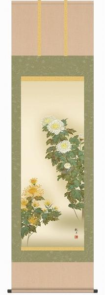 ● 森山観月『菊花(尺五立)』版画+手彩色【R2508】・掛軸 掛け軸・花鳥 新品 表装済 花鳥 植物 フラワー 菊 キク 季節秋 秋掛け ギフト・プレゼント(贈答)にはラッピングします
