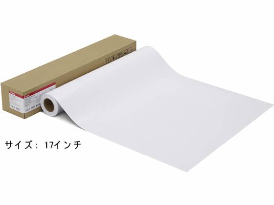 キヤノン/プレミアム光沢紙2厚口/LFM-GPP2/17/280[2941B013]