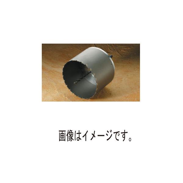 【代引不可】ハウスBM:塩ビ管用コアドリル ABF (フルセット) ABF-170 5011391