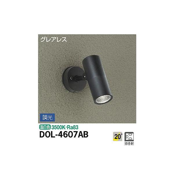 【代引不可】大光電機:アウトドアスポット DOL-4607AB
