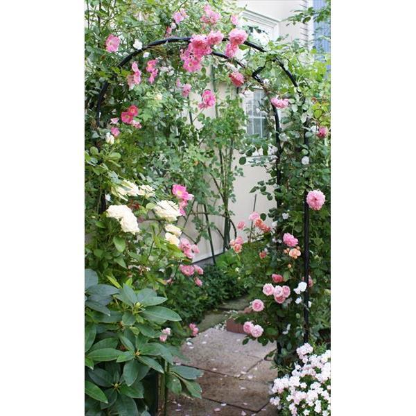 第一ビニール:組み立てかんたんフラワーアーチW120 W120-H ガーデニング ガーデンファニチャー 庭 家庭菜園