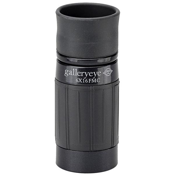 Kenko(ケンコー):ギャラリースコープ ブラック 6倍16mm KGS-EYEBK612