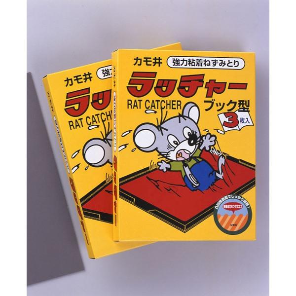 カモ井加工紙:ラッチャ- 3P(ブックタイプ) 1箱(3枚入り)×30箱セット