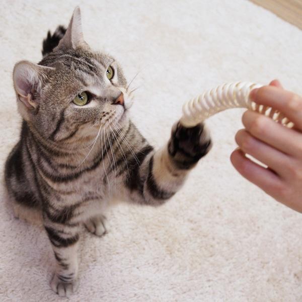 ドギーマンハヤシ:キャティーマン じゃれ猫 森のおもちゃ くるまきコイル