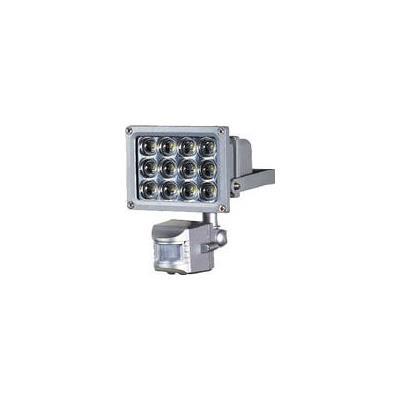 日動 LEDセンサーライト 12W(1台) SLS12P 4412869