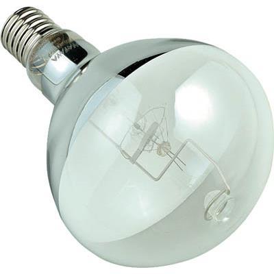 ハタヤ 水銀灯電球500W (RGM型、RMD型水銀作業灯用)(1個) BHRF500W 3702774