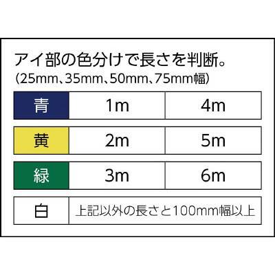 100×3.0 ( ZE1000300 ) ZE1000300 田村 Zタイプ 4E ベルトスリング